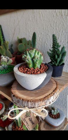 Cactos Naturais com jarro de concreto  - Foto 6
