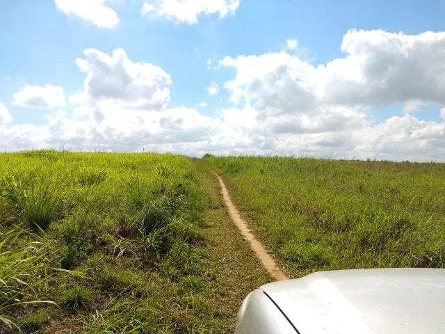 Fazenda com 180 Hectares a 8 km da Pista de Cortês-PE