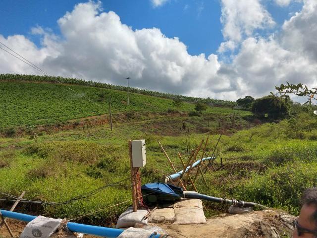 Fazenda com 180 Hectares a 8 km da Pista de Cortês-PE - Foto 18