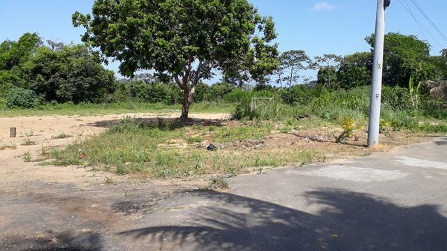 Terreno 100% plano em cajazeiras Boca da Mata - Foto 2