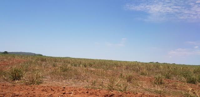 Fazenda em Rio Verde 28 alqueires   170 mil   Valor de Oportunidades - Foto 5