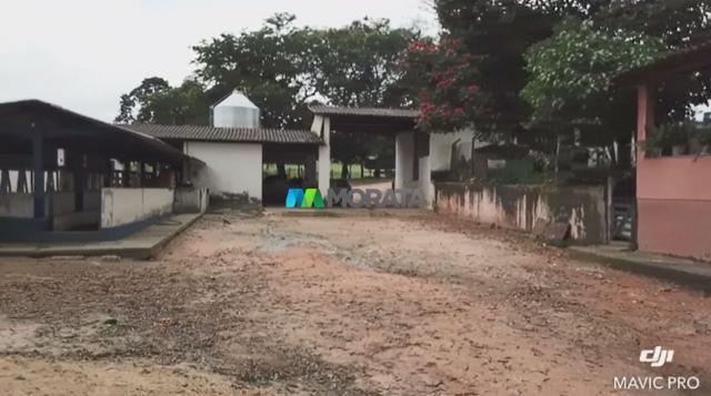 FAZENDA A VENDA - 86 hectares - REGIÃO SETE LAGOAS (MG) - Foto 8