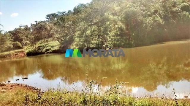 FAZENDA À VENDA - 187 HECTARES - ONÇA DO PITANGUI (MG) - Foto 2