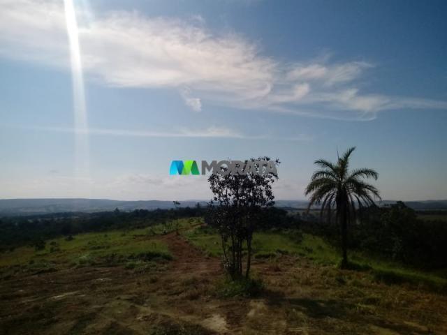 FAZENDA A VENDA - 143 hectares - BOM DESPACHO (MG) - Foto 2