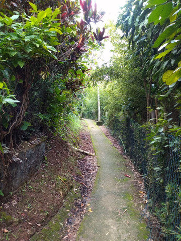 Casa em Águas Lindas, Ilha de Itacuruça - Foto 14