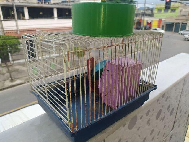 Gaiola de Hamster - Foto 2