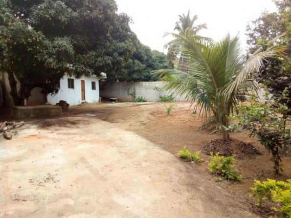 Terreno murado com casa área de 520 mt