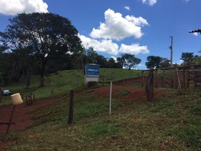 Fazenda com 5,5 Alqueires, Toda Formada, Pontalina Goiás, - Foto 15