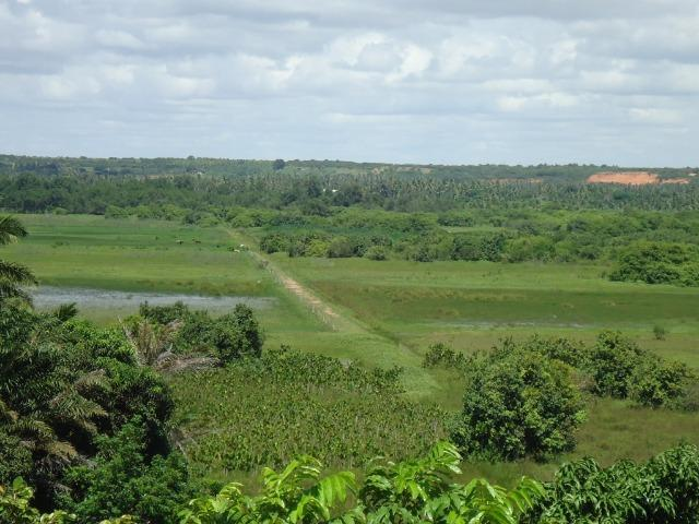 Vendo Fazenda em Ceará Mirim - Foto 15