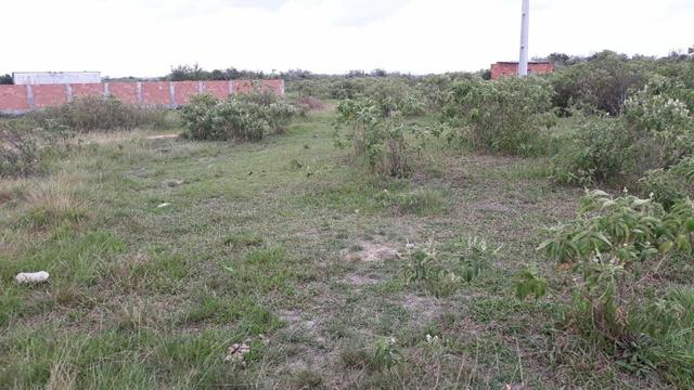 L Terreno Localizado na Estrada de São Jacinto - Foto 4