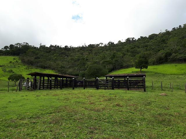 Venda ou arrendamento Excelente Fazenda 540 tarefas em Ubaira - Foto 12