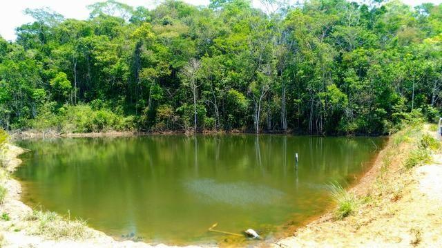 Sítio de 29 hectares com piscicultura formada em Alexânia-GO - Foto 16