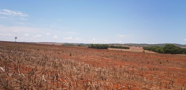Fazenda em Rio Verde 28 alqueires   170 mil   Valor de Oportunidades - Foto 4