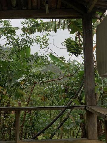 Vende-se Fazenda no Boqueirão de Itajuru - BA - Foto 4