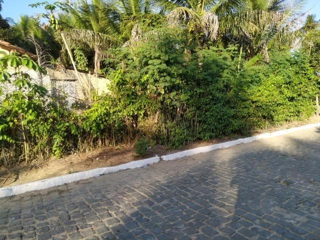 Sítio na Vila Temão - Jitaúna - Foto 20