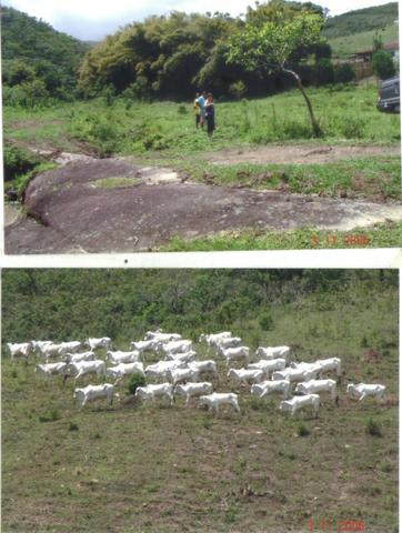 Fazenda 97 Alqs Na Região do Vale do Paraíba SP Negocio de oportunidade - Leia o anúncio