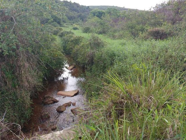 Fazenda com 180 Hectares a 8 km da Pista de Cortês-PE - Foto 5