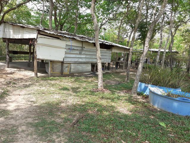Casa no bairro Joao Bosco Pinheiro - Foto 5
