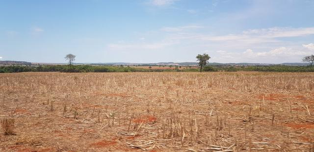 Fazenda em Rio Verde 28 alqueires   170 mil   Valor de Oportunidades