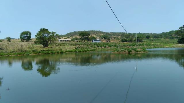Sítio de 29 hectares com piscicultura formada em Alexânia-GO