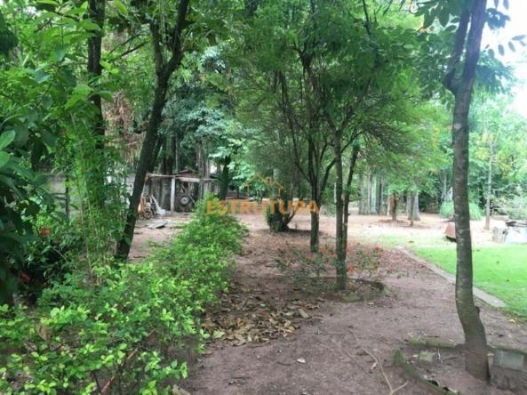 Chácara com 2 dormitórios à venda, 2000 m² por R$ 650.000,00 - Granja Regina - Rio Claro/S - Foto 7