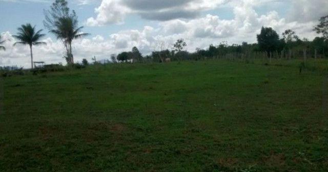 Arrendamento - Fazenda com 82 ha, Una-BA - Foto 3
