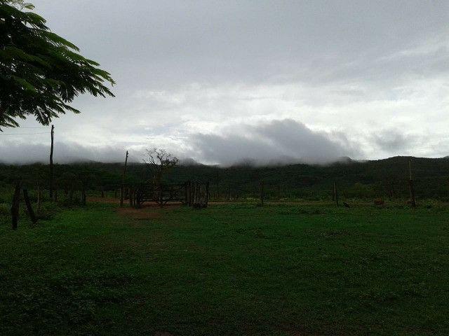 Fazenda 145 ha em Várzea da Palma/MG - Foto 5
