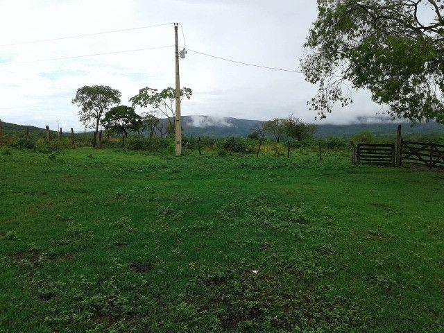 Fazenda 145 ha em Várzea da Palma/MG - Foto 18
