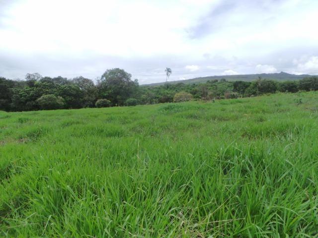 Fazenda 132 Alqueires Municipio Cocalzinho.Riquissima em agua