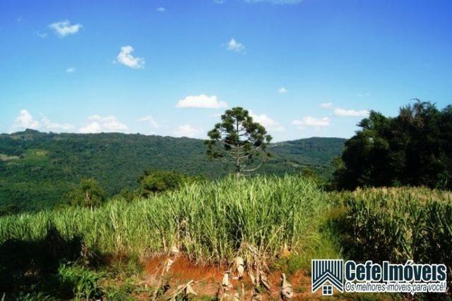 Área de terras com 11.15 hectares em Pinhal Alto - Nova Petrópolis / RS - Foto 7
