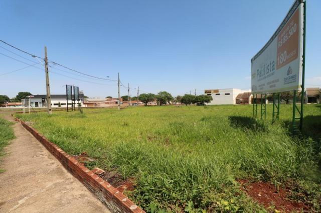 Terreno para alugar em Jardim colina verde, Maringa cod:L51431 - Foto 4