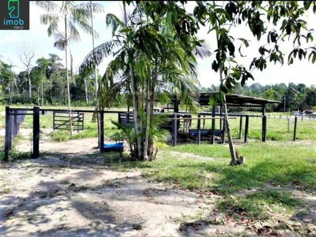 Vendo Fazenda em Novo Airão - Foto 5