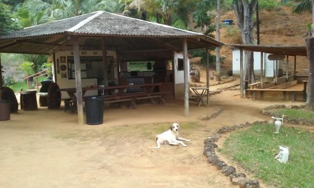 Alugo sítio em Santa Teresa/ES - Foto 14