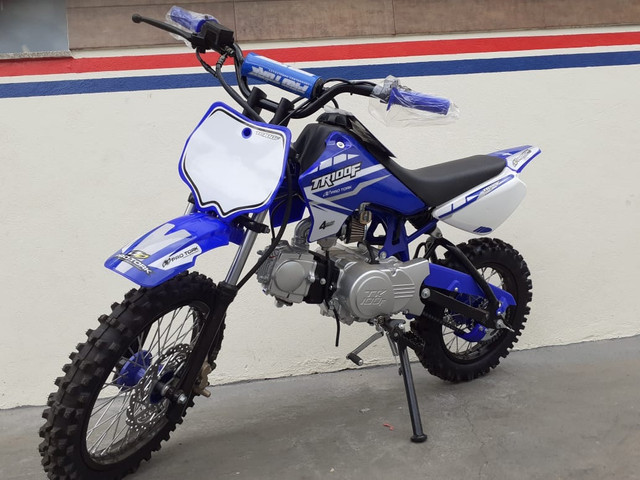 Mini moto TRF 100