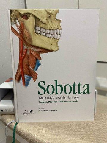 Box de anatomia Sabotta - Foto 3