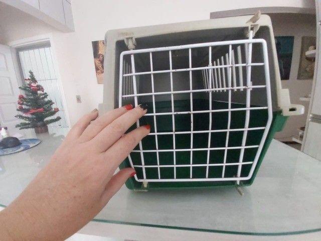 transporte animal medio - Foto 6