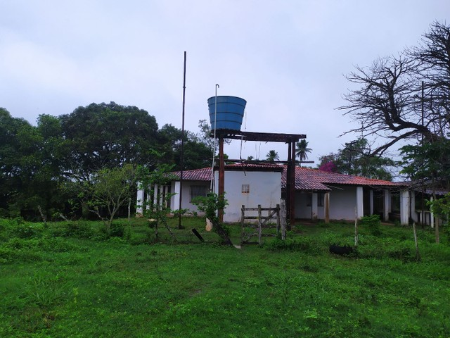 Salgado Pov Moendas Casa grande + 8 Tarefas + tanque - Foto 4