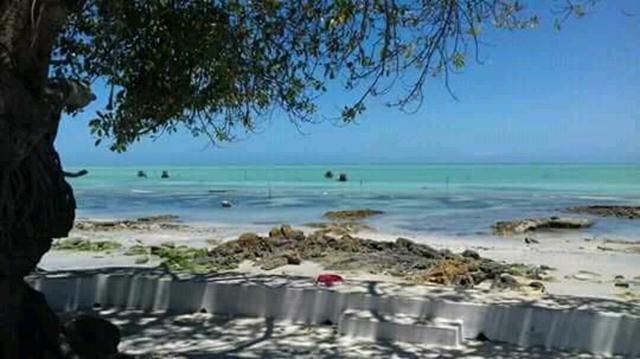 Oportunidade de ouro terreno na praia de ponta de pedras!! - Foto 19