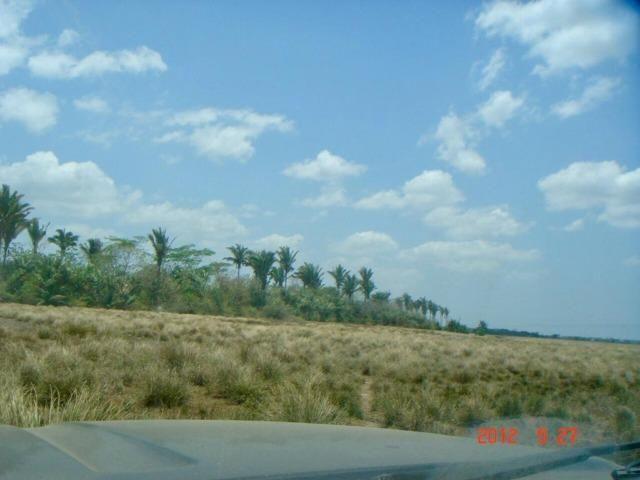Vende-se Fazenda em Santa Rita - Foto 2