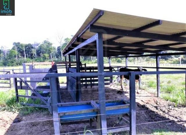 Vendo Fazenda em Novo Airão - Foto 9