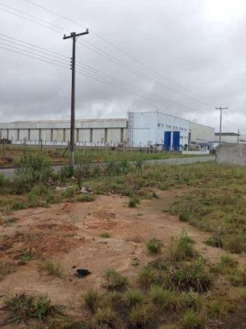 Área comercial para locação com 5.100 m², Audi, São José dos Pinhais.