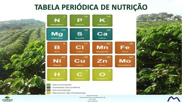 Adubo fertilizante - Foto 4