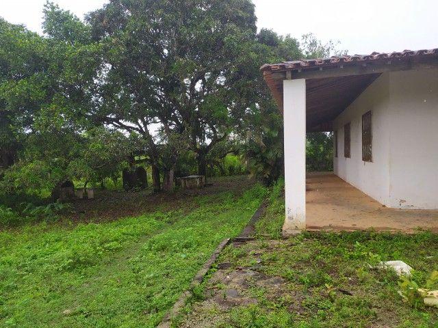 Salgado Pov Moendas Casa grande + 8 Tarefas + tanque - Foto 6