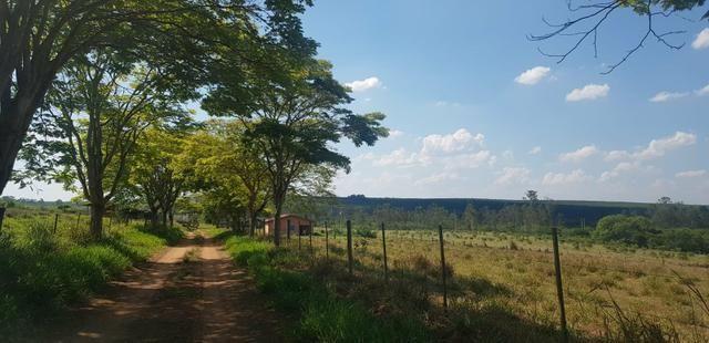 Fazenda 220 Alqueires - Foto 8