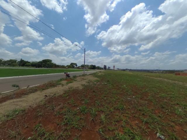 Terreno para alugar com 0 dormitórios em Setor solange, Trindade cod:28420 - Foto 5