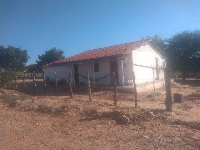 Terreno em ibimirim Pernambuco - Foto 6