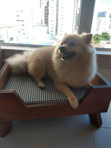 Caminha sofá para pet nova - Foto 5
