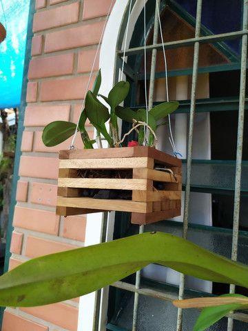 Cachepot de madeira - casinhas - vasos - Foto 2