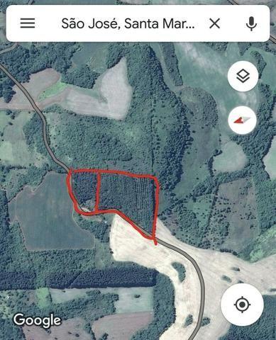Vendo terreno pinus com 11 ano - Foto 3