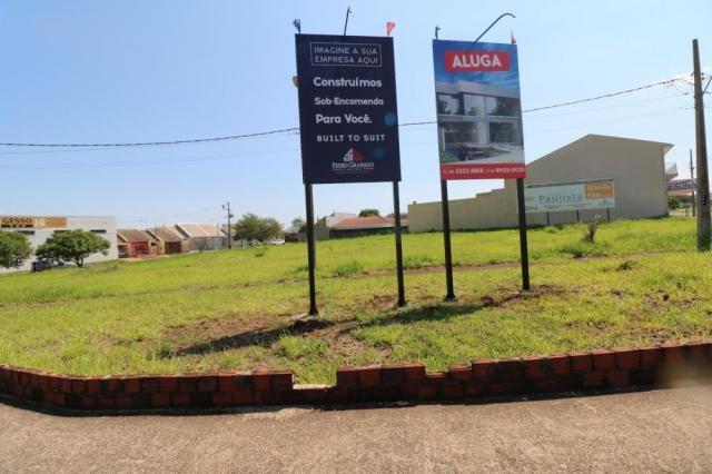 Terreno para alugar em Jardim colina verde, Maringa cod:L51431 - Foto 8